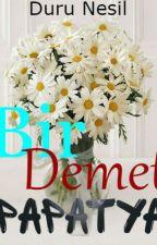 Bir Demet  Papatya by durunesilyoyen