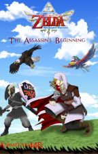 Zelda Skyward Sword: The Assassin's Beginning (Dark Link x Reader X Link) by Animefan446