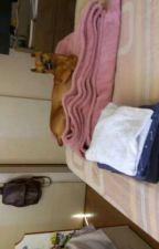 Blog de un perro sensual by CapuchinoElPerro
