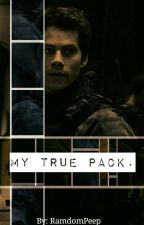 My True Pack. by TonyStarkandQueen
