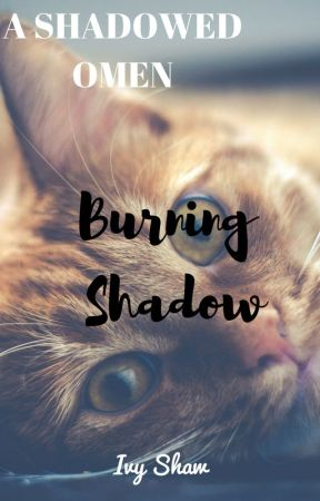 A Shadowed Omen Book 1 - Burning Shadow -  : Chapter Five - Rainpaw