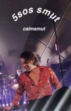 5sos smut by calmsmut