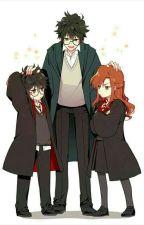 Xuyên không vô tình làm em gái của Harry Potter by kudoceladon0504