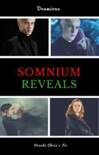 Somnium Reveals ESTÁ EM HIATO by BrendaChaia