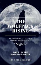 The Bad Boy is a Werewolf by Percabeth0418