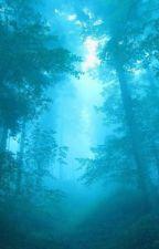 In pădurea minții by MihneaDumitru