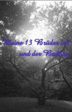Meine 13 Brüder ich und der Badboy*Abgeschlossen* by Animalmylife