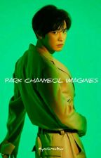 Park Chanyeol x Reader Imagines by yodarealbae