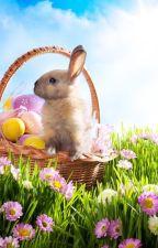Easter Eggs in Websites by Slinder500