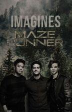 Mini-Imagines e preferências de Maze Runner  by MariE_Amell