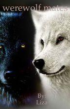 werewolf mates by oolluc