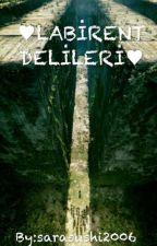 ♥Labirent Delileri ♡ by sarasushi2006