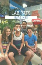 Lab Rats One Shots  [REQUEST OPEN] by The-Loyalists