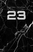 23  by ezgisu8648ceylan