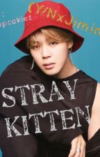 [DISCONTINUED]Stray Kitten (Y/NxJimin) by cupcakiez