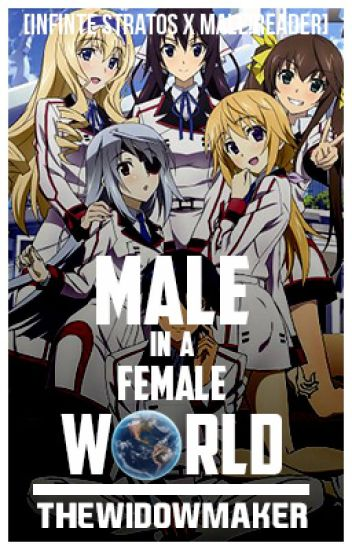 Male In a Female World [Male!Reader x Infinite Stratos