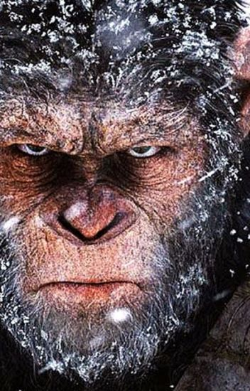war for the planet of the apes solarmovie
