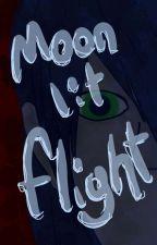 Moon lit flight by NightwriterMystica