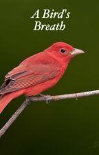 A Bird's Breath by Oxyrome