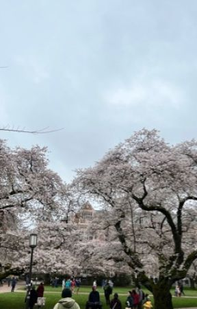Daily Blogs by Starlight_Fantasy99