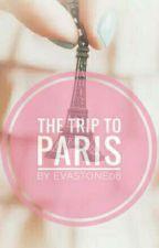 The Trip To Paris by weavingdreams08