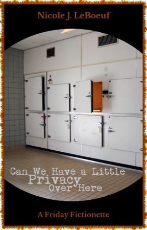 Can We Have a Little Privacy Over Here (excerpt) by NicoleJLeBoeuf