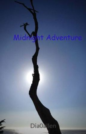 Night Adventure by Dia0allen