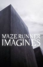 the maze runner ≫ Imagines VF by casonyx