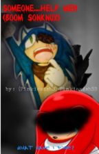 Someone....help me!! (Boom Sonknux) by Pinkiewish33
