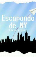 Escapando De NY by TowwyRednar