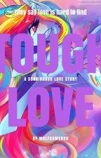 SoarinDash~ Tough Love by wolfgamer20