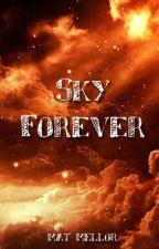 Sky Forever by BlueWingedMeerkat
