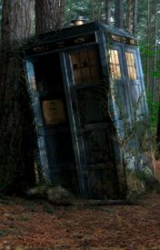 The TARDIS in The Forest by TARDIS101