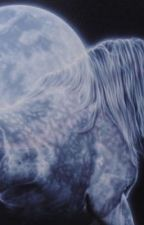 Ghost Stallion by lizzy_wilson20