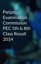 Panjab Examination Commission PEC 5th & 8th Class Result 2014 by KhurramAslam