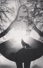 A boszorkány és a vérfarkas 2 - A rejtélyes lány by KrisztinaFekete182