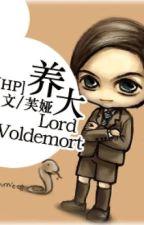 Nuôi lớn Lord Voldemort [HP đồng nhân] by stephanienguyen94