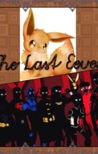 The Last Eevee (A young Justice fanfic)  by PandoraArtamisFox