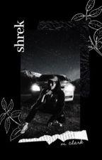 shrek| j. avery by that70schic
