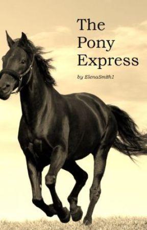 The Pony Express by ElenaSmith1