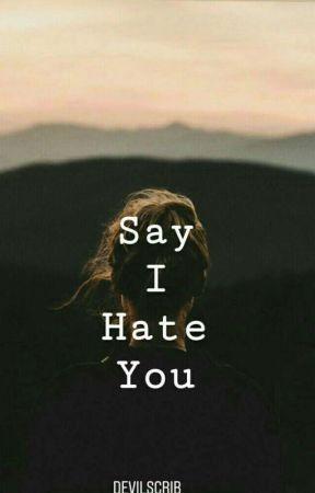 Say I hate you ✔ by Devilscrib