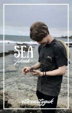 바다(sea)   jikook by eternityguk