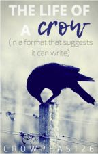 The Life of a Crow in a Format That Suggests It Can Write by crowpeas126