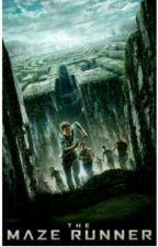 Maze runner: correr o morir  by InstaStark3341
