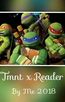 Ninja Style || Human!TMNT x Reader - Salt King - Wattpad