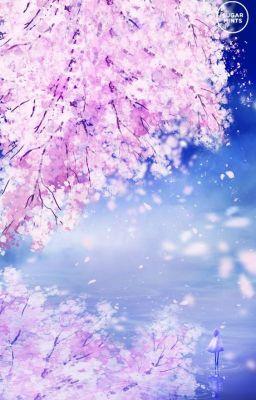Đọc truyện Anh Đào Tan Trong Gió (AllKuro)