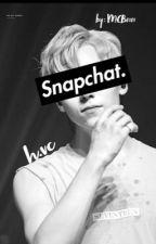 Snapchat. // h.vc [Vernon x Reader] by rainhui