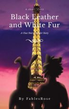 Black Leather and White Fur (Chat Noir X Reader) by FablesRose
