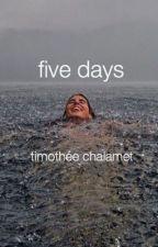 five days// timothée chalamet  by elle905