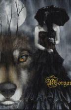 High School Wolf Romance by snow96